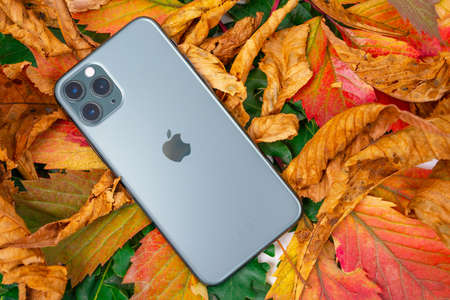 ROSTOV, RUSSIA - August 26, 2020: top view new Apple iPhone 11 or 12 Pro lie on colorful foliage. Autumn presentation or event Apple The latest model of mobile phones. Modern technologies