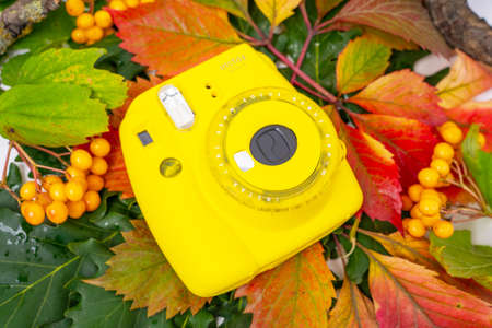 August 29, 2020, Rostov, Russia: Instant camera Fujifilm INSTAX MINI 9 lies on colorful autumn leaves, top view, copy space Editorial