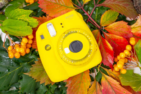 August 29, 2020, Rostov, Russia: Instant camera Fujifilm INSTAX MINI 9 lies on colorful autumn leaves, top view, copy space. Editorial