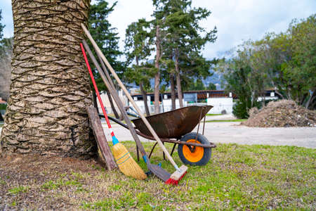 Old wheelbarrow to gather garbage, and garden tools for cleaning and caring for garden stand by thick trunk of palm tree in new city park under construction.