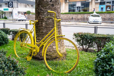 Vintage yellow bicycle is parked on the lawn with green grass as art object, leaning on exotic palm tree and surrounded by little bushes. Creative urban landscape.