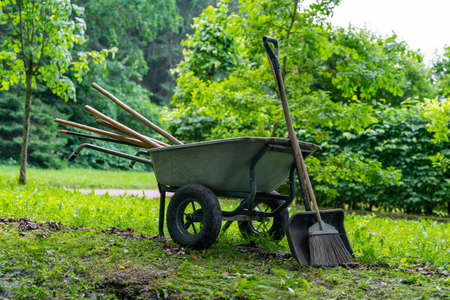 Wheelbarrow with shovel, broom and other garden tools is prepared for cleaning and planting in the park, standing on green grass of lawn among trees.