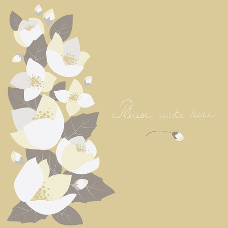simple purity flowers: Vector greeting card with jasmine flowers and space for text