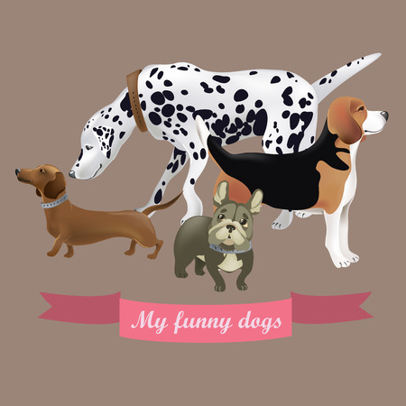 short haired: Vector set of funny cartoon dogs. Vector illustration