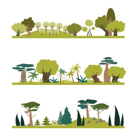 plants species: Set di diverse specie di alberi. Conifere, tropico, deciduo. Vettoriale, illustrazione, in stile piatto
