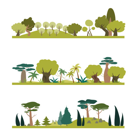 species: Set of different trees species . Coniferous, tropic, deciduous. Vector isolated illustration in flat style Illustration