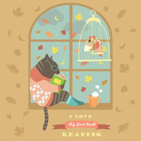 Lustige Katze Lesung durch das Fenster. Standard-Bild - 44271541