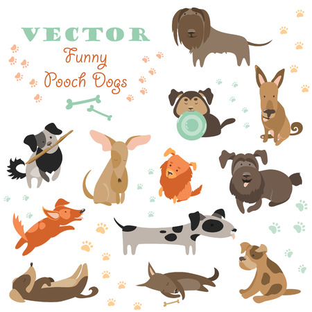 animal tracks: Set of funny Mixed Breed dogs. Vector isolated icons