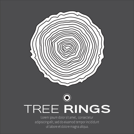tree rings: Tree rings background and saw cut tree trunk vector, forestry and sawmill. Wood texture. Vector illustration