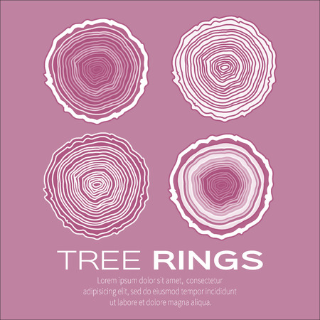 forestry: Tree rings background and saw cut tree trunk vector, forestry and sawmill. Wood texture. Vector illustration
