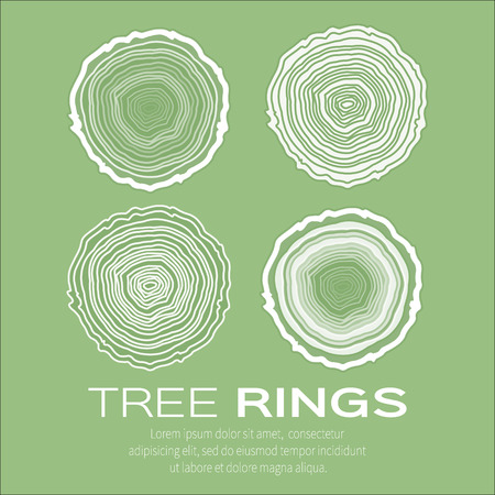tree texture: Tree rings background and saw cut tree trunk vector, forestry and sawmill. Wood texture. Vector illustration