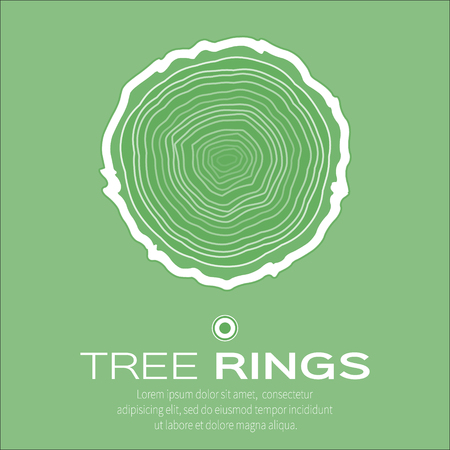 rings on a tree cut: Tree rings background and saw cut tree trunk vector, forestry and sawmill. Wood texture. Vector illustration