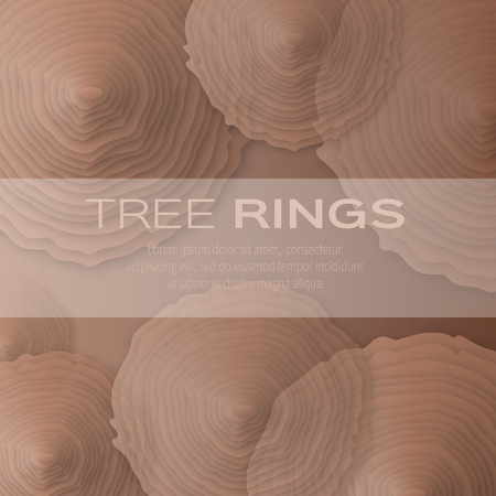 plywood: Tree rings with saw cut tree trunk - cut from paper concept background. Forestry and sawmill. Vector illustration - eps10