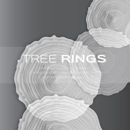 rings on a tree cut: Tree rings with saw cut tree trunk