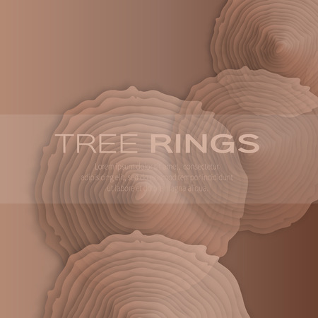 rings on a tree cut: Tree rings with saw cut tree trunk - cut from paper concept background. Origami form forestry and sawmill. Applique Vector illustration - eps10 Illustration