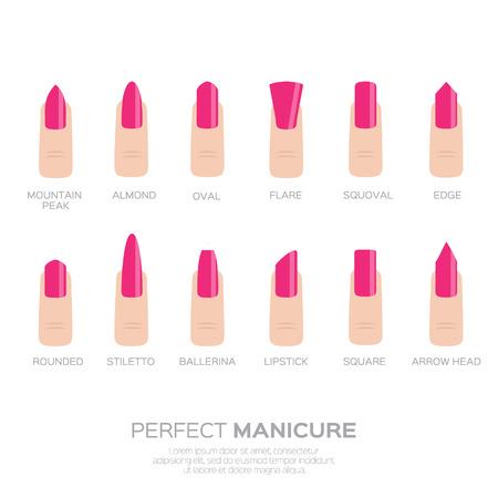 trends: Different pink nail shapes. Woman fingers. Fingernails fashion trends. Vector design illustration Illustration