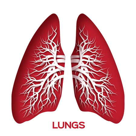 exhale: Lungs origami. Red Paper cut  Human Lungs anatomy with bronchial tree. Applique Vector design illustration.