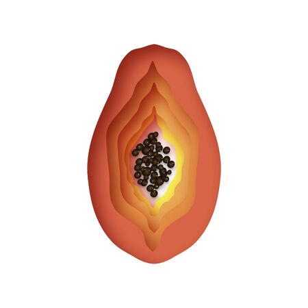 Ripe papaya. Sweet tropical fruit in paper cut style.