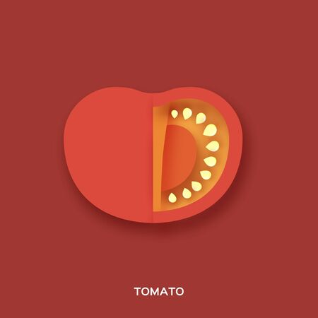 Tomato. Red slice on red background. Front view. Ilustracja