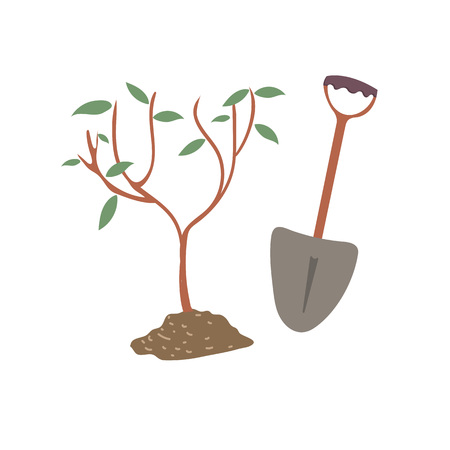 Young tree planting with shovel flat vector illustration Ilustrace
