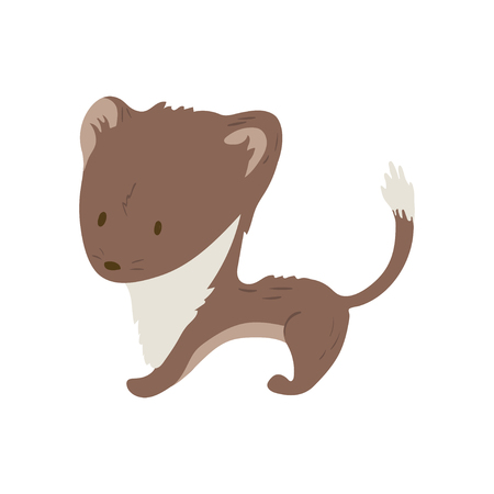 Forest animal vector with isolated cartooning little stoat. Good as print card sticker for kids accesories