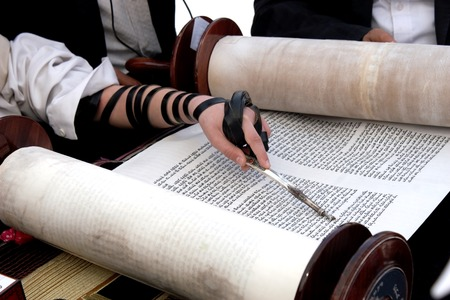 scroll paper: Reading the Torah scroll macro, hand with tefillin