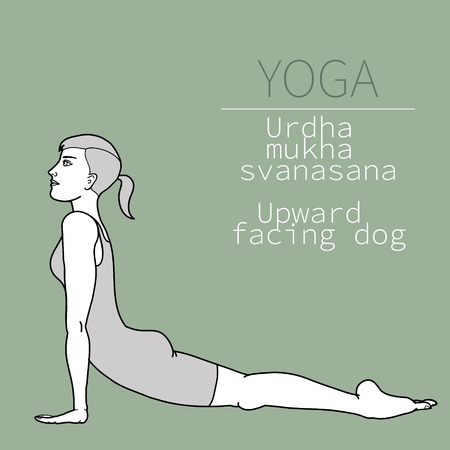 yoga pose, image includes the phrase urdha mukha svanasana, upward facing dog