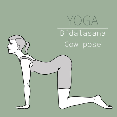 yoga pose, image includes the phrase bidalasana,  cow pose