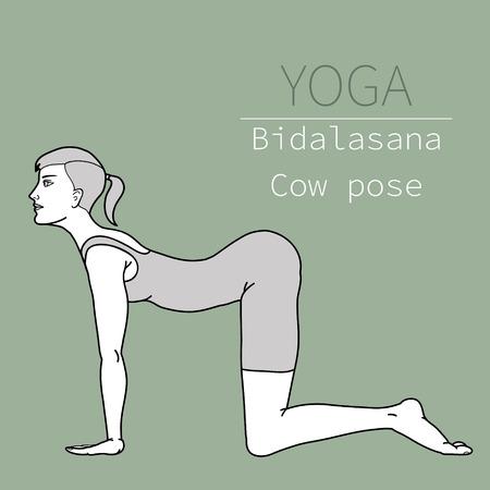 yoga pose, image includes the phrase bidalasana, cow pose