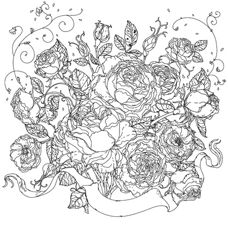 uncolored: Uncolored colouring book style luxury roses in zenart style, could be used for Adult colouring book. Hand-drawn, doodle, vector the best for your design, wedding cards, coloring book. Black and white.