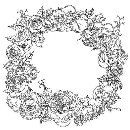 uncolored: Uncolored colouring book style  roses frame in zenart style, could be used for Adult colouring book. Hand-drawn, doodle, vector the best for your design, wedding cards, coloring book. Black and white. Illustration