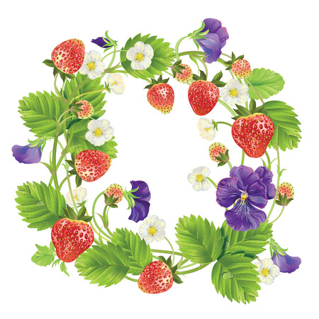 homeopathic: Vector strawberry round frame.