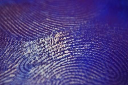 print: Finger print macro shot