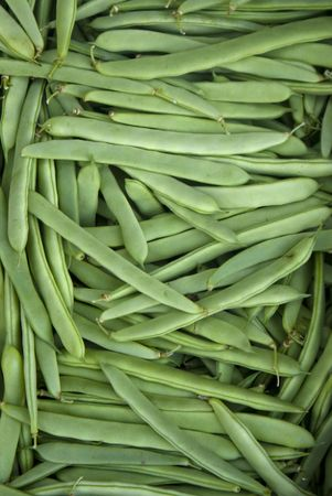 A collection green bean vegetable also known in some countris as loubia photo