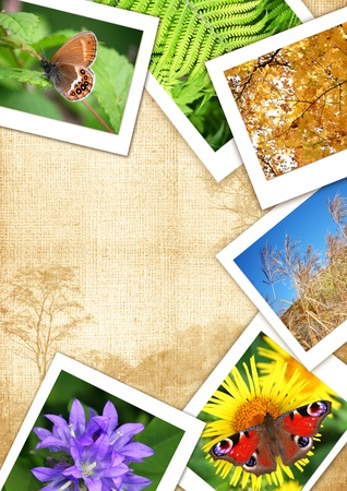 Frame from different photos for design and text  Collage frame serial  photo