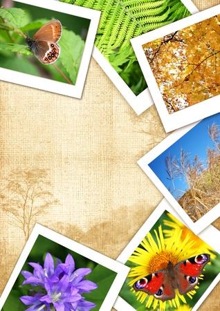Rama z różnych zdjęć na wzór i tekst seryjny ramy Collage Zdjęcie Seryjne