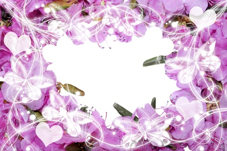 Pretty frame from pink flowers  photo