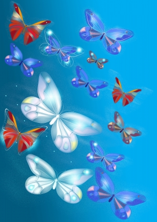 Beautiful butterflies for design  Butterflies design photo
