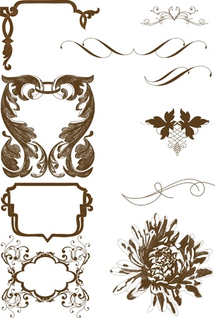 Vector set of calligraphic elements for your design  Calligraphic vector Stock Vector - 14372360