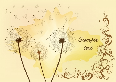 vector dandelion for your elegant vintage design   Stock Vector - 14463362