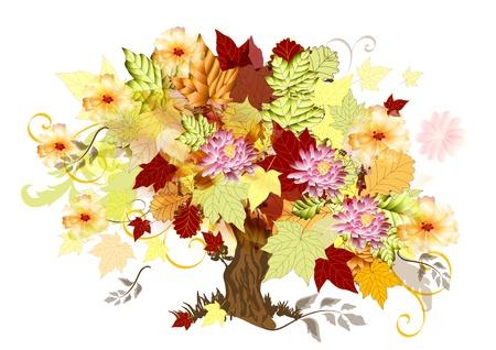 maple tree: Art tree beautiful for your design   Autumn