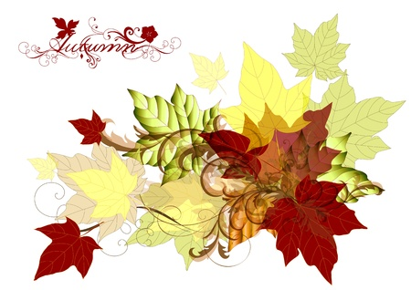 Autumn background with maple leafs for your design  Autumn Vector