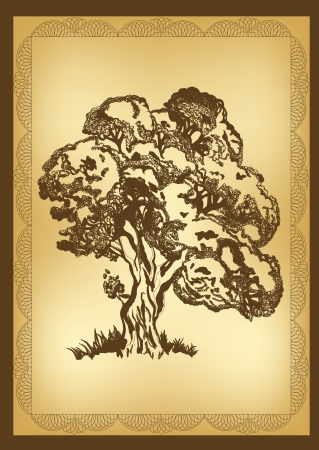 oak tree: drawing tree for your design