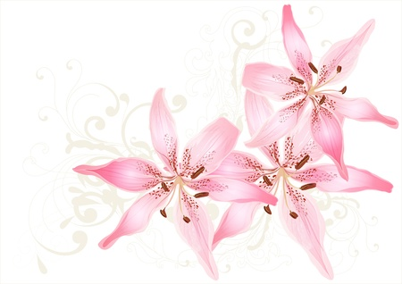 Pretty pastel card with lily Vector