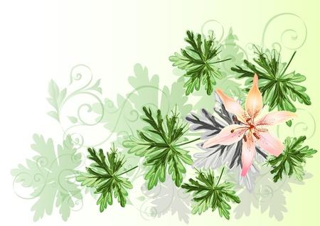 elegant flourish background for your design. Stock Vector - 14809413