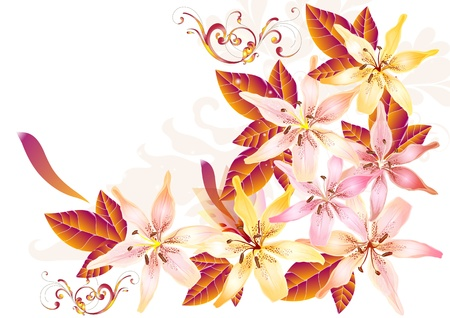 Floral illustration Vector