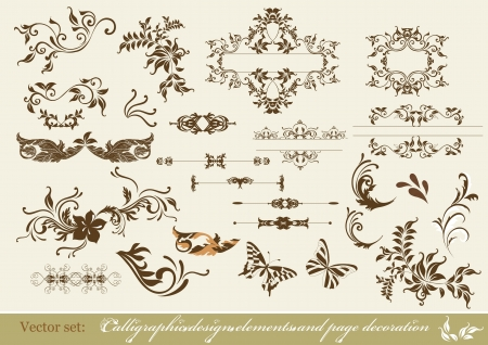 page decoration: Decorative elements for elegant design  Calligraphic