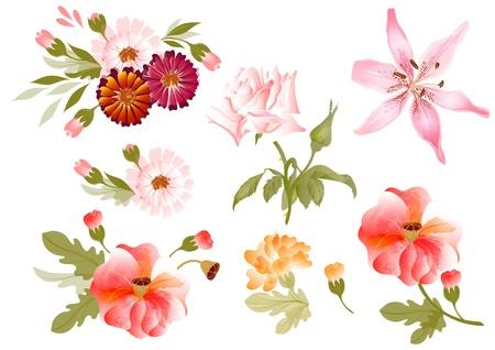 flores color pastel: Conjunto de flores pintadas en acuarela estilo acuarela