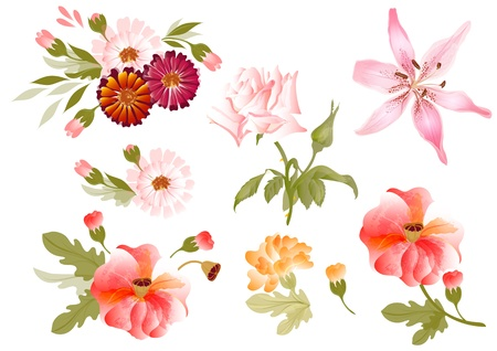 pastel flowers: set of painted flowers in watercolor style watercolor