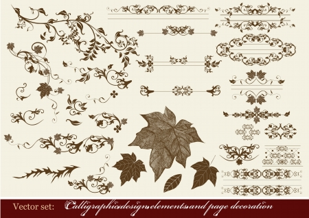 Decorative elements for elegant design  Calligraphic Stock Vector - 15316057